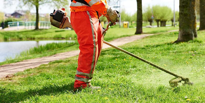 koszenie trawnika w parku miejskim