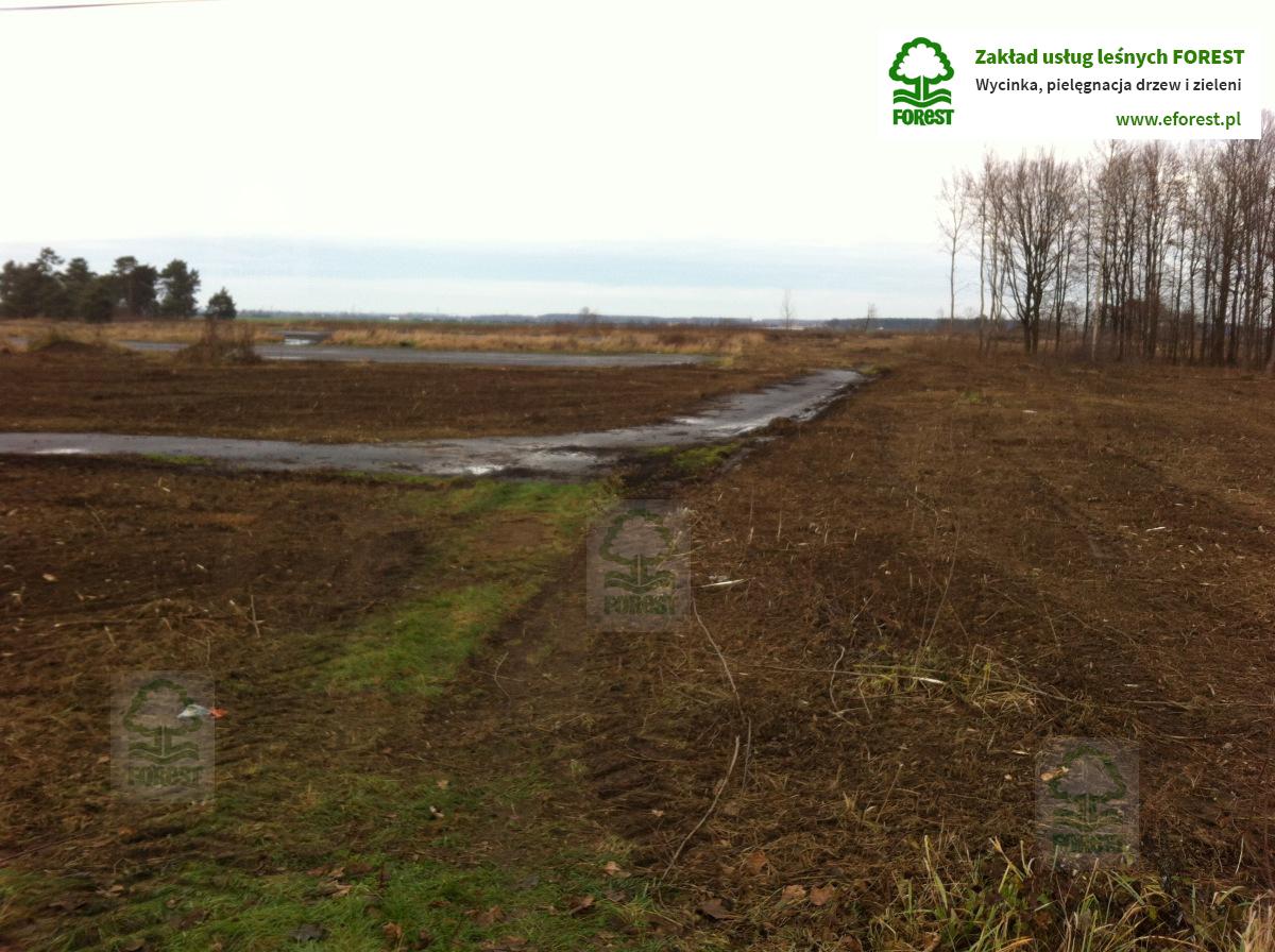 rekultywacja terenu pod budowę hali pordukcyjnej magazynowej