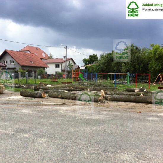 wycięte drzewa leżą na placu szkoły podstawowej w tle plac zabaw dla dzieci