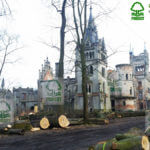 Zabytkowy zamek Kopice wycinka drzew ścięte drzewa leżą przed zamkiem
