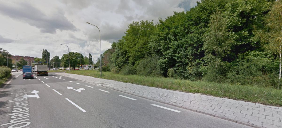 Opole skrzyżowanie Oleska Plebisytowa przed wycięciem drzew