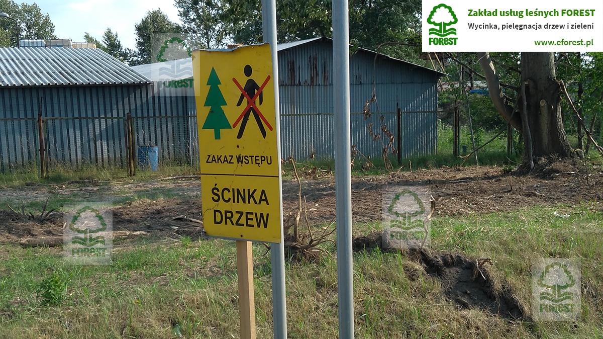 znak ostrzegawczy ścinka drzew
