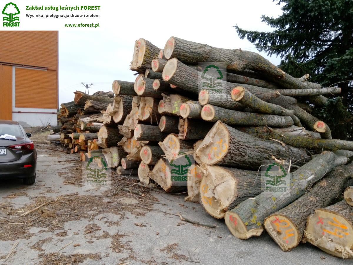 Drewno przygotowane do szacunku brakarskiego u klienta w Katowicach