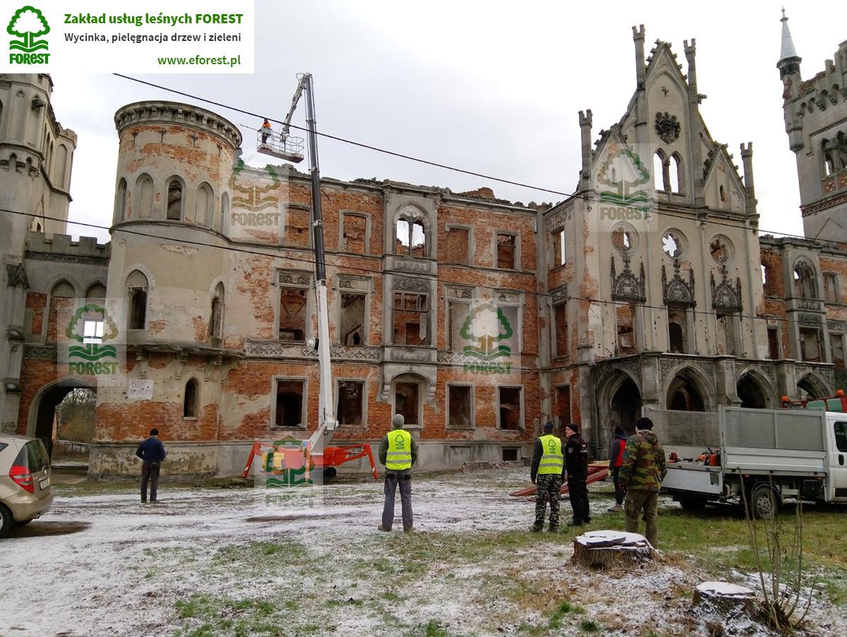 Usuwanie samosiewów z murów pałacu Zamek Kopice w województwie opolskim