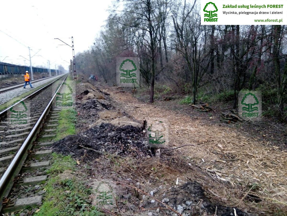 Wycinka drzew i krzewów przy linii kolejowej Wrocław – Katowice